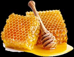 CIS Český svaz včelařů