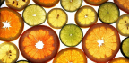Citronová detoxikační dieta