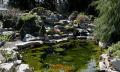 Budujeme fóliové zahradní jezírko