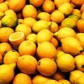 Detoxikace citronem
