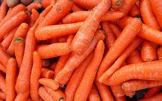 Recepty na dušenou mrkev