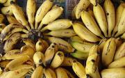 Banánová bábovka