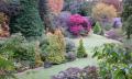 Jak zazimovat zahradu