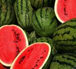 Triky svodním melounem